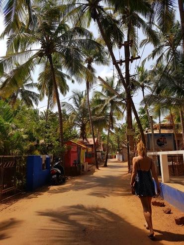 India - Agonda Highstreet
