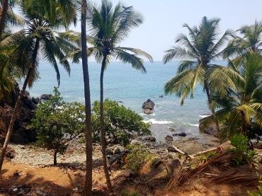 India - Goa coast 3